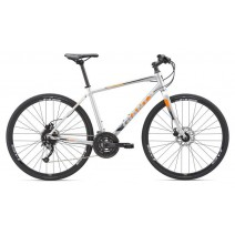 Xe đạp nguyên chiếc Giant Escape 1 Disc 2019 (bánh xe 700c) (màu bạc)